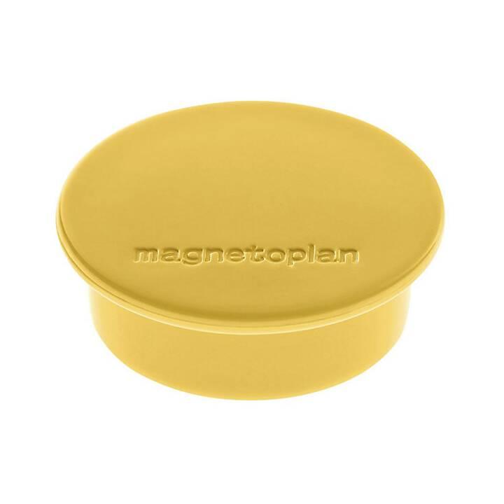 MAGNETOPLAN Color Puntina magnetico (40 pezzo)