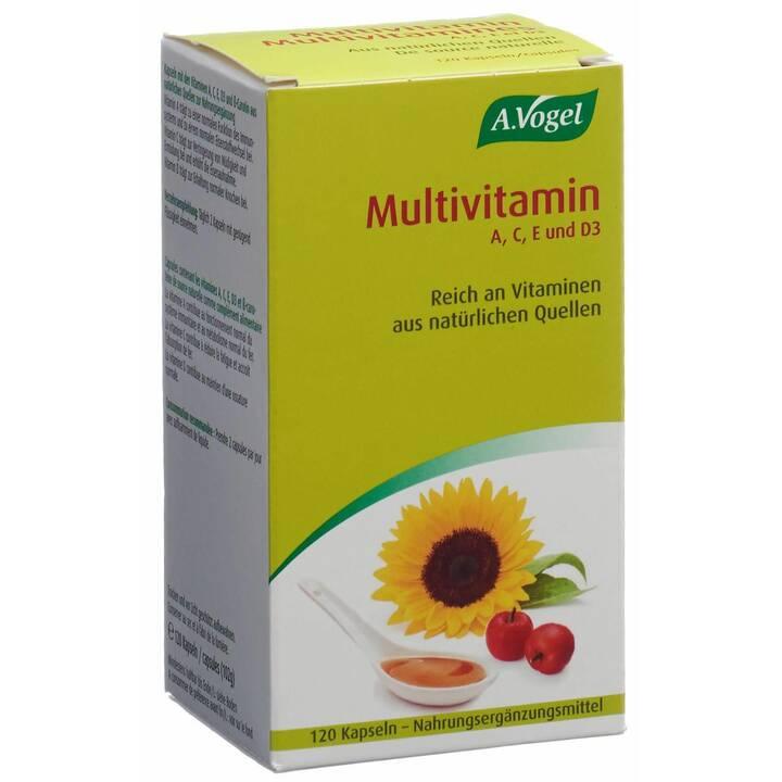 A. VOGEL Multivitamin