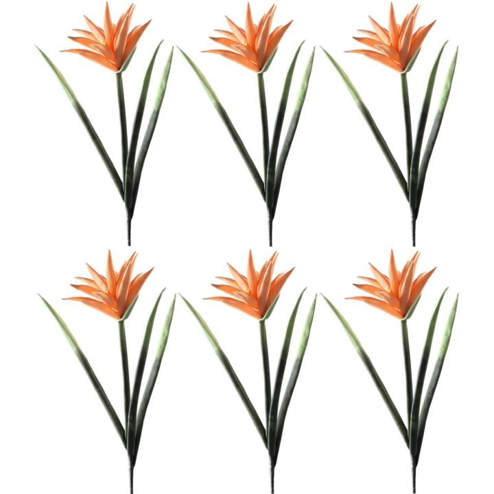 LEONARDO Fiore Deko Schilder (120 mm x 830 mm, Orange)