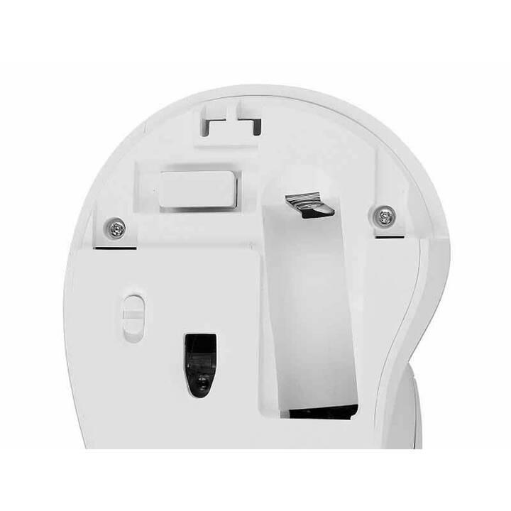 DELOCK Maus (Kabellos, USB)