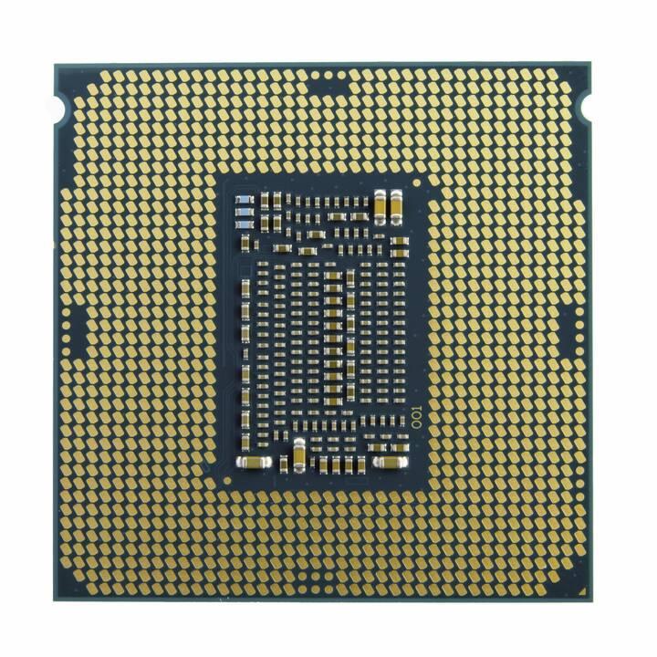 INTEL Xeon E E-2236 (LGA 1151, 3.4 GHz)