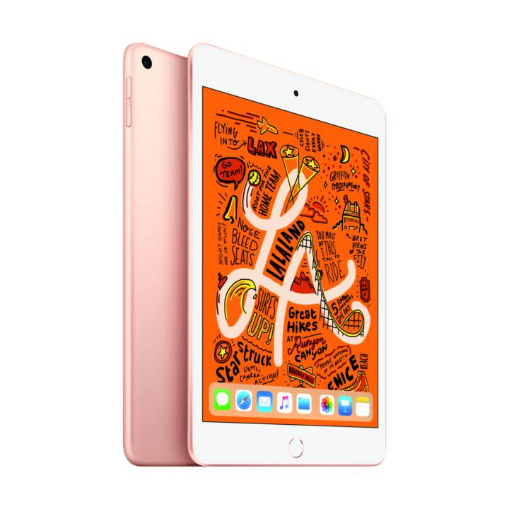 "APPLE iPad mini Wi-Fi 2019  (7.9 "", Apple A12 Bionic, 256 GB)"