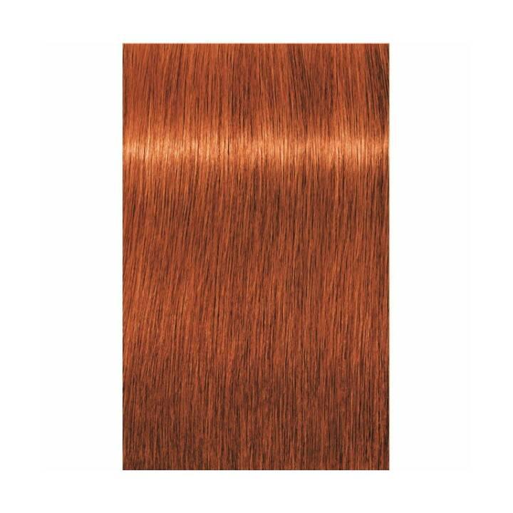 SCHWARZKOPF Igora Royal (7.77, Medium Blonde Copper Extra)
