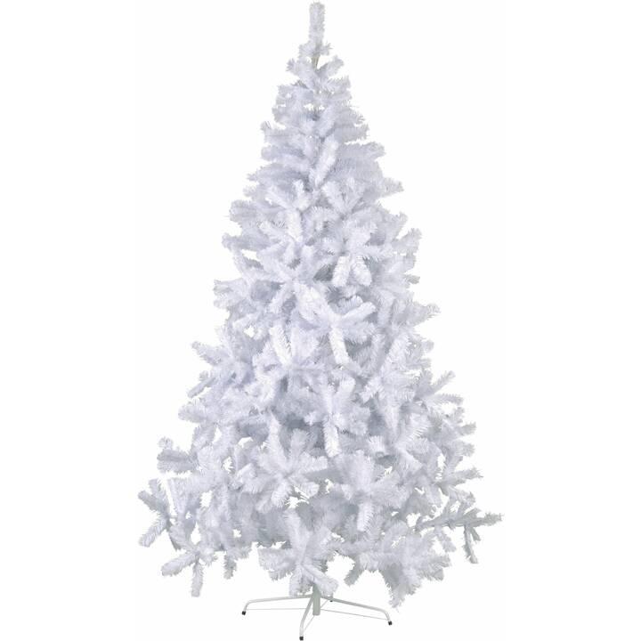 STAR TRADING Albero di Natale Quebec  (1 pezzo)