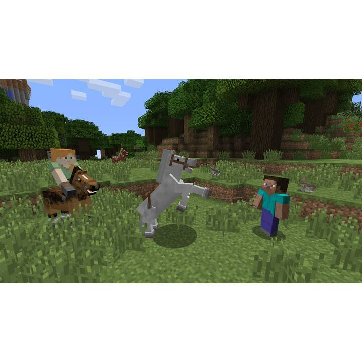 Minecraft (FR)