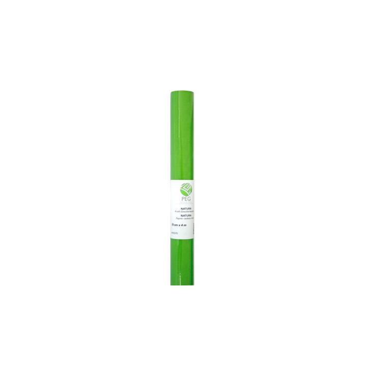 NEUTRAL Kraft Gift Paper 70cmx4m verde chiaro