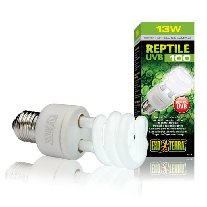 EXOTERRA Lampe à rayons ultraviolets UVB 100 (Ampoule électrique, 13 W)