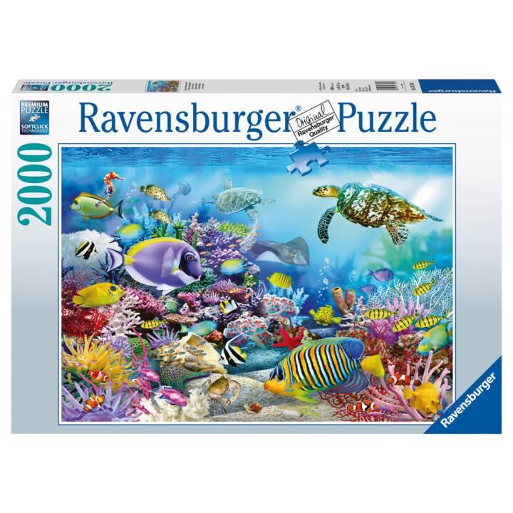 Puzzle Unterwasserwelt 2000 Teile, Softc