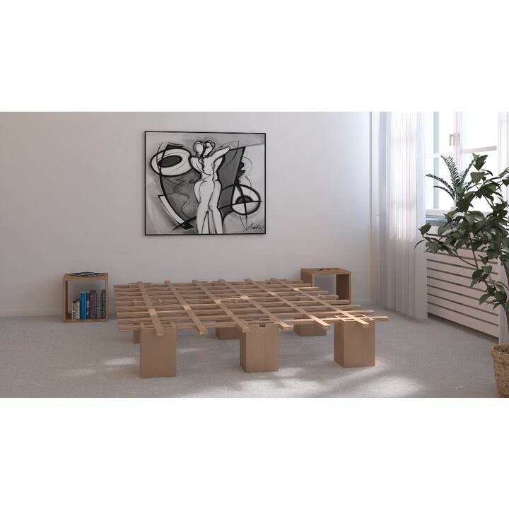 TOJO Cadre de lit pour futon System 160