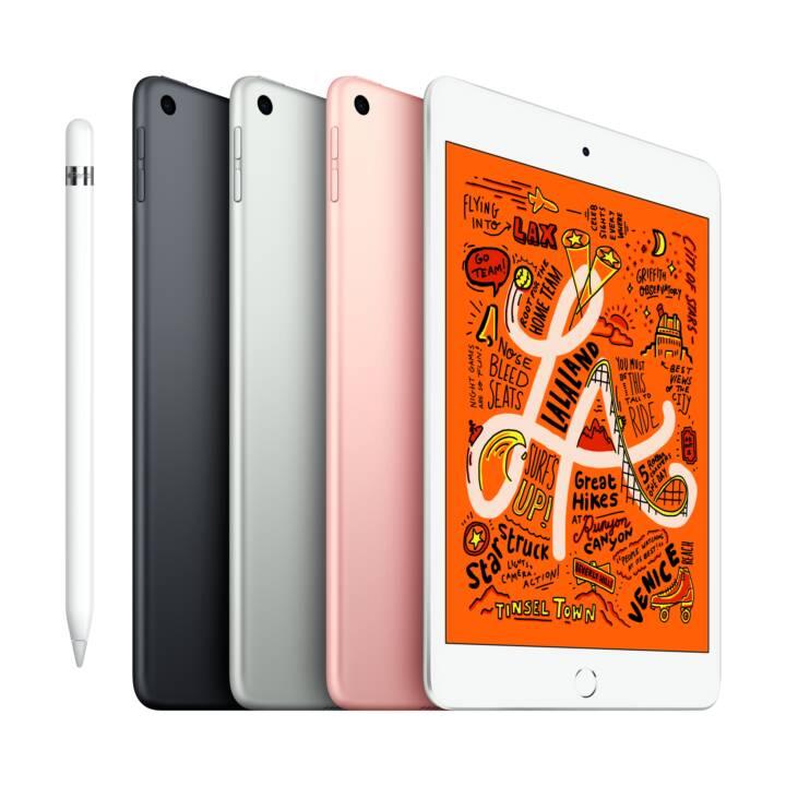"""APPLE iPad mini Wi-Fi 2019  (7.9 """", Apple A12 Bionic, 64 GB)"""