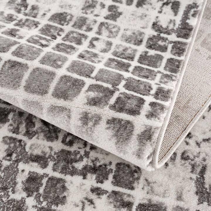 MYCARPET Tapis Noa (1600 mm x 1600 mm, Gris)