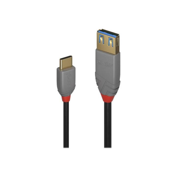 LINDY Black Line Câble USB Type C, 15 cm