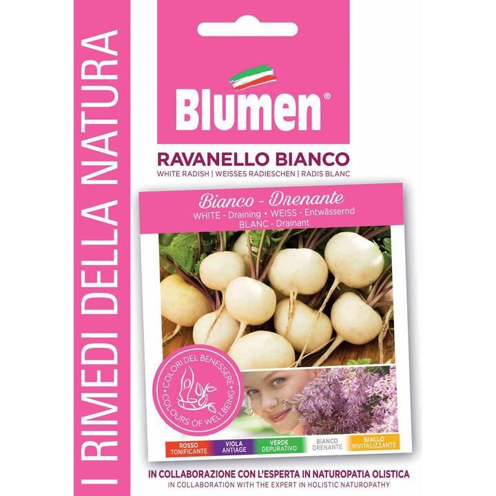 BLUMEN Ravanello  (12 g)
