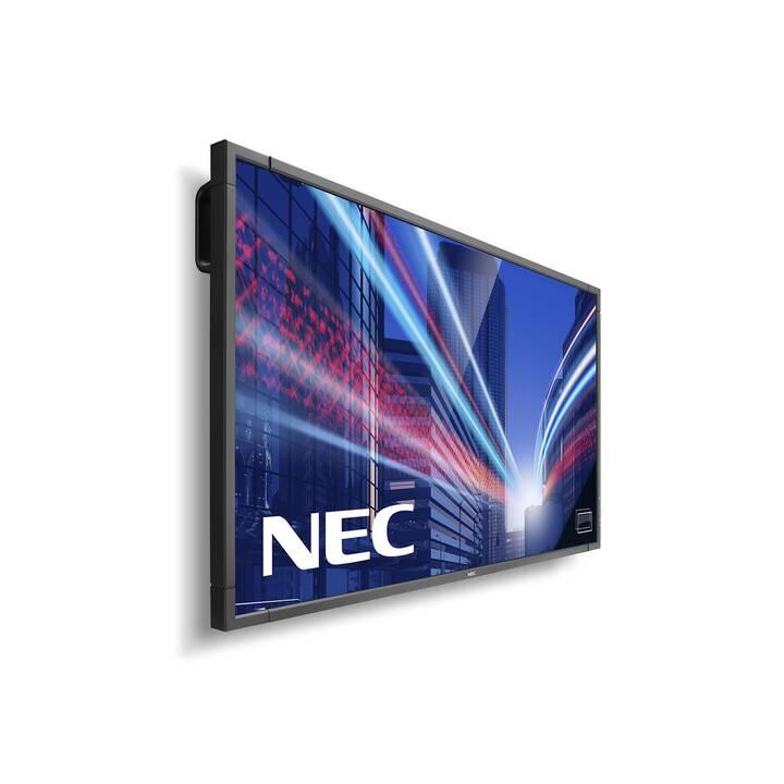 """NEC P801 PG (80 """", LCD - LED-Backlight)"""