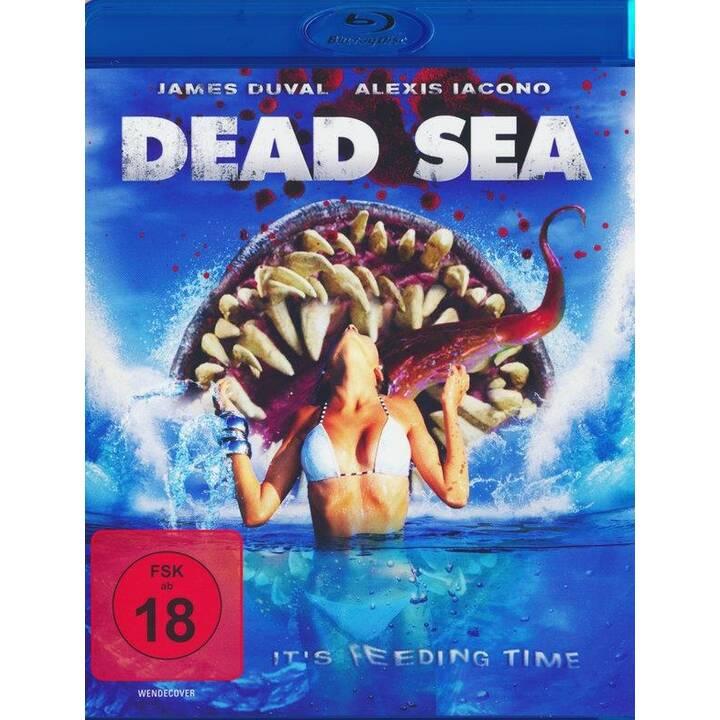 Dead Sea (DE, EN)
