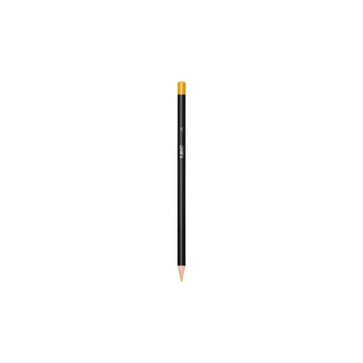 BIC Crayons de couleur Intensity  (Multicolore, 36 pièce)
