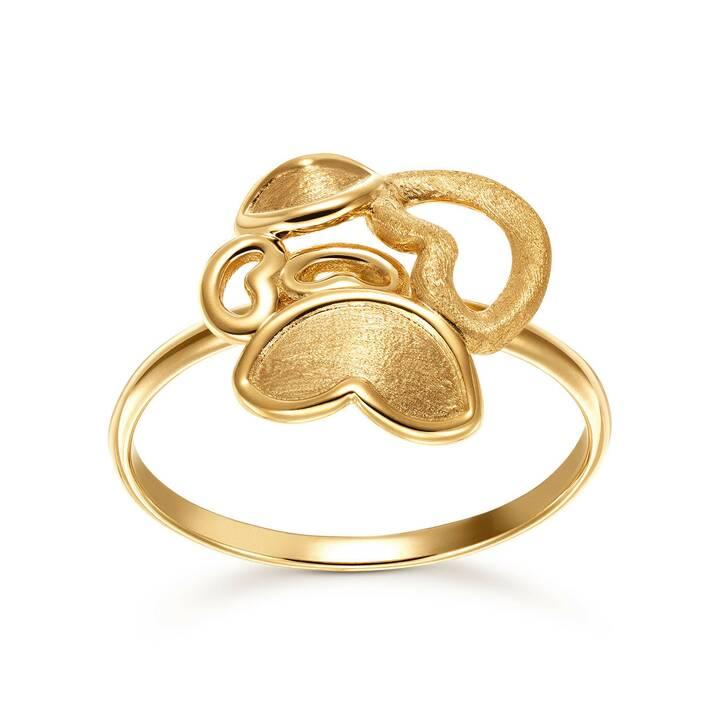 GOLD SPIRIT Anello amicizia (56, Oro giallo)