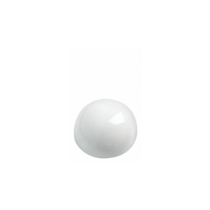 MAUL Puntina magnetico (10 pezzo)