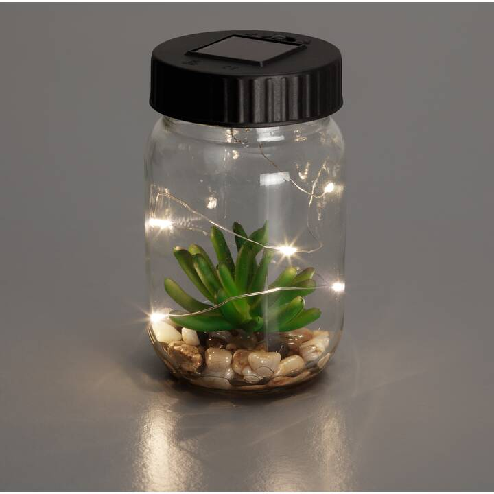 INTERTRONIC Solar Glass Light Solarleuchten (Transparent)