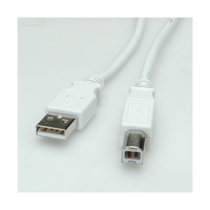 XCAB Value Câble USB 2.0 - 4,5 m - Blanc