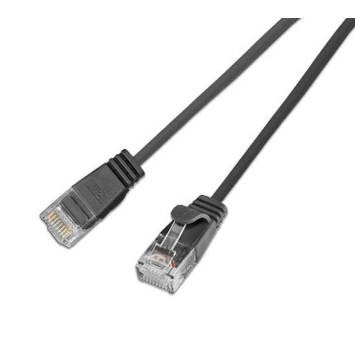 WIREWIN Câble réseau (RJ-45, 5 m)