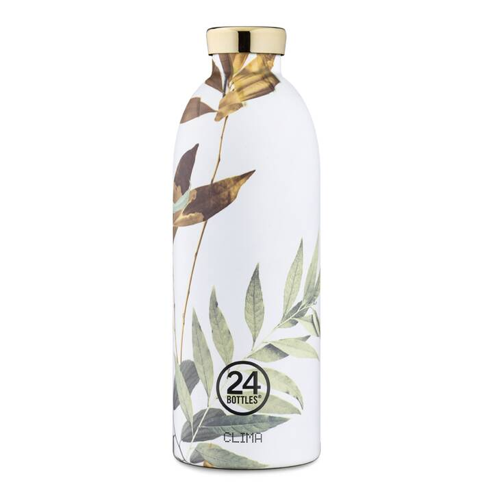 24BOTTLES Thermo Trinkflasche Tivoli (850 ml, Grün, Weiss, Hellgrün)