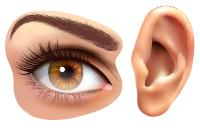 Лечение глаз и ушей