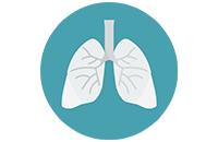 Бади для органів дихання