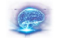 Бади для нервової системи