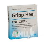 Грипп-Хеель раствор для инъекций ампула 1,1 мл №5