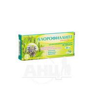 Хлорофиллипт таблетки 25 мг блистер №20