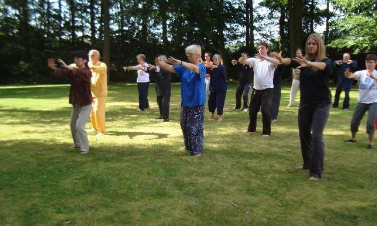 Perceiving the natural energy and relaxation in the agenda in Tai Chi