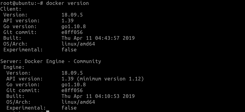 check the docker version with the docker version command