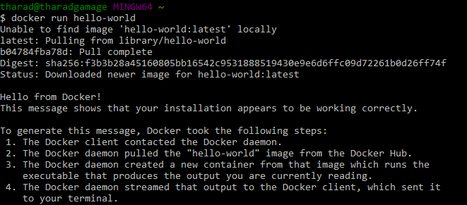 Windows Docker Container hello-world