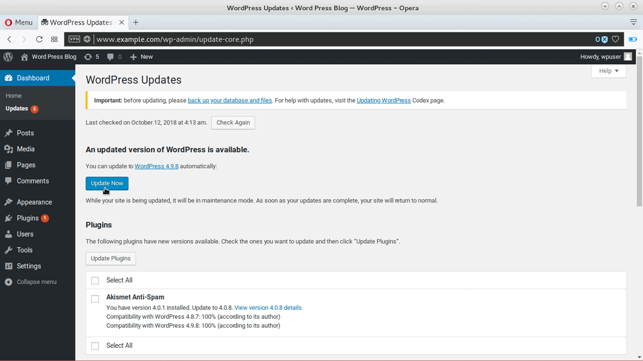 How to Update WordPress Automatically (WordPress Core, Themes and Plugins)