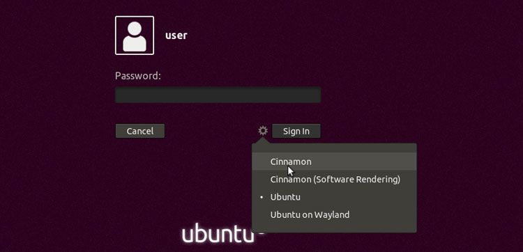 Log in to the Ubuntu cinnamon desktop
