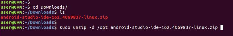 Unzip zip file to the /opt directory.