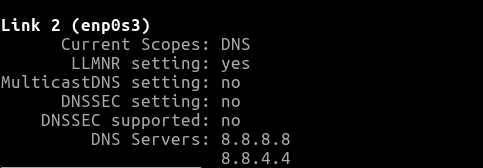 Viewing a server's current DNS assignment