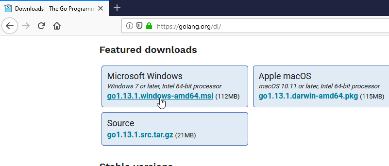 Download Golang 64bit for Windows 10
