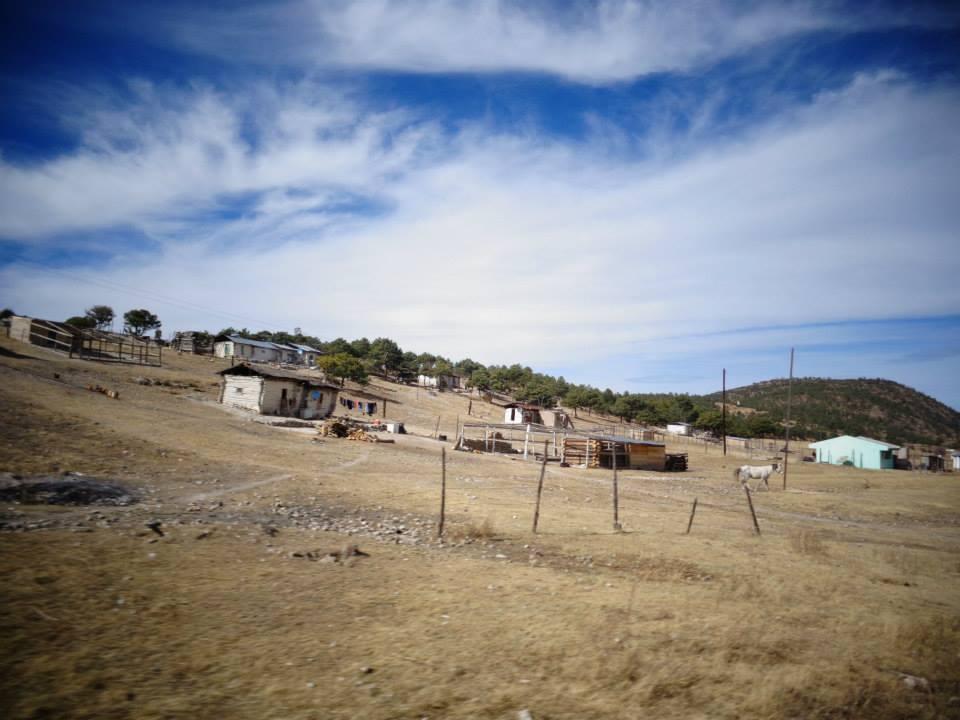 La Sierra Tarahumara entre naturaleza y la violencia
