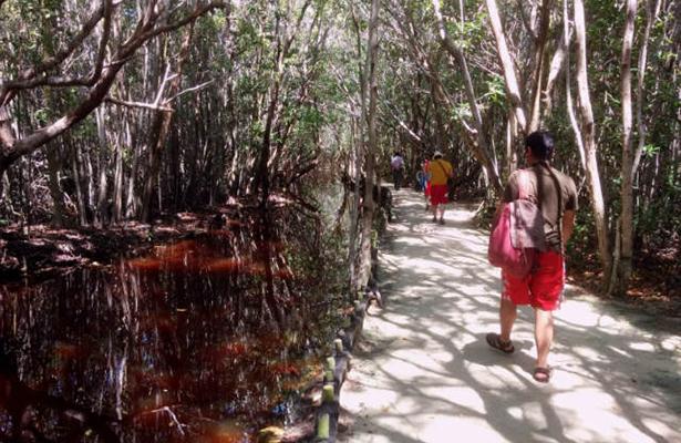 el corchito camino al cenote