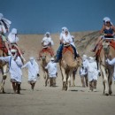 camellos_loscabos_02
