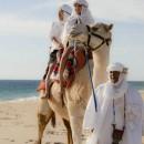camellos_loscabos_10