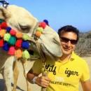 camellos_loscabos_11