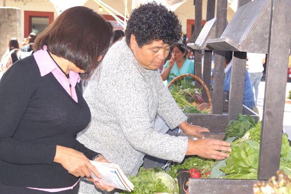 Carece DIF de Calpulalpan de registro de pobreza alimentaria