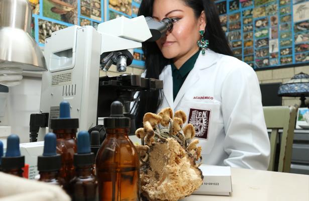 El IPN tiene la colección de hongos más grande de América Latina