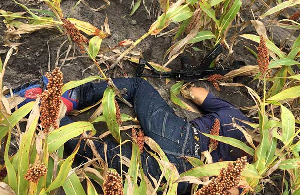 Mueren cinco en enfrentamiento en Tamaulipas