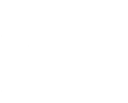 sureproperties.es