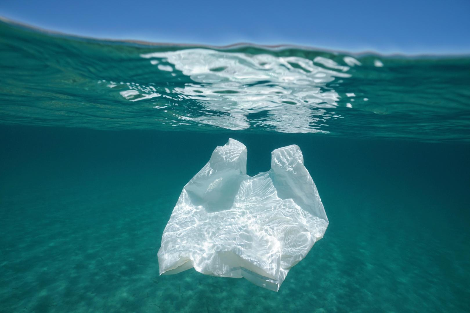 WE NEED TO KEEP THE BEACHS AND OCEANS FREE PLASTIC.