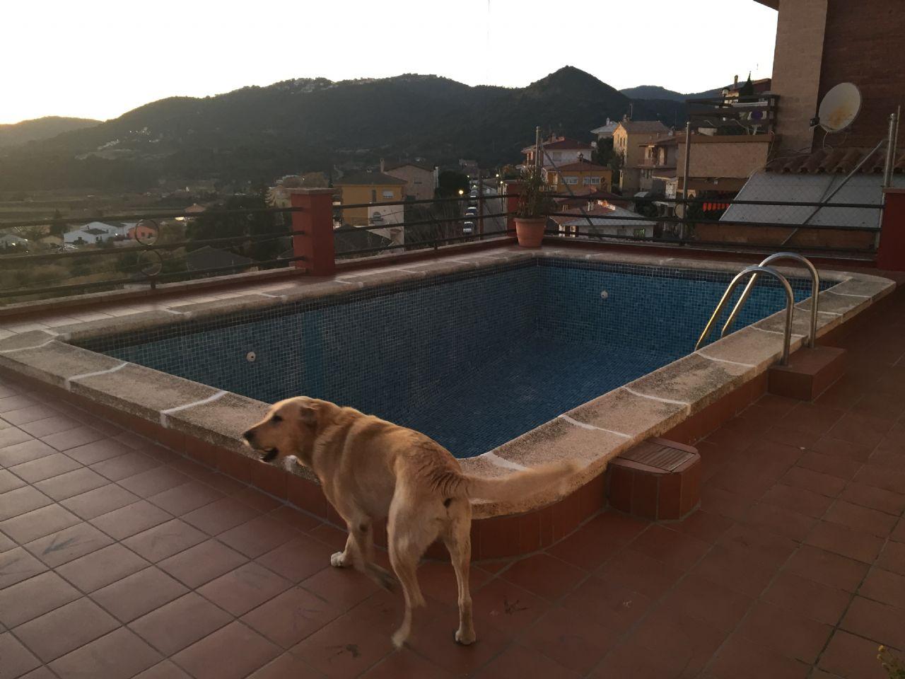 Casa / Chalet en Pineda de Mar, venta